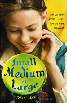 Book cover for Small Medium at Large by Joanne Levy