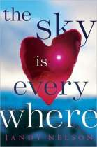 book cover for The Sky Is Everywhere by Jandy Nelson