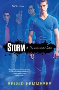Book cover for Storm by Brigid Kemmerer
